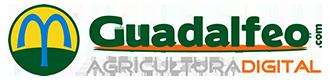 guadalfeo.com