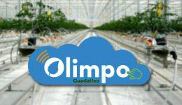 Olimpo-blog4
